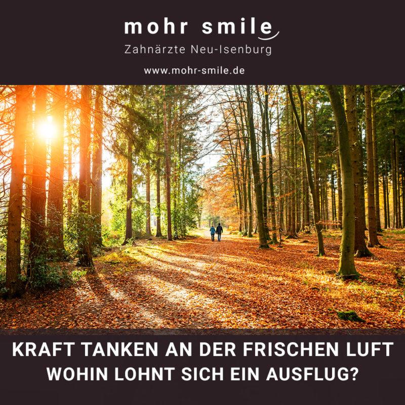 Herbstspaziergang - Zahnarztpraxis Neu Isenburg mohr smile